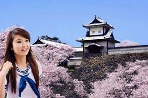 Cao đẳng Tiếng Nhật: Sự cần thiết trong thời kỳ hội nhập và phát triển